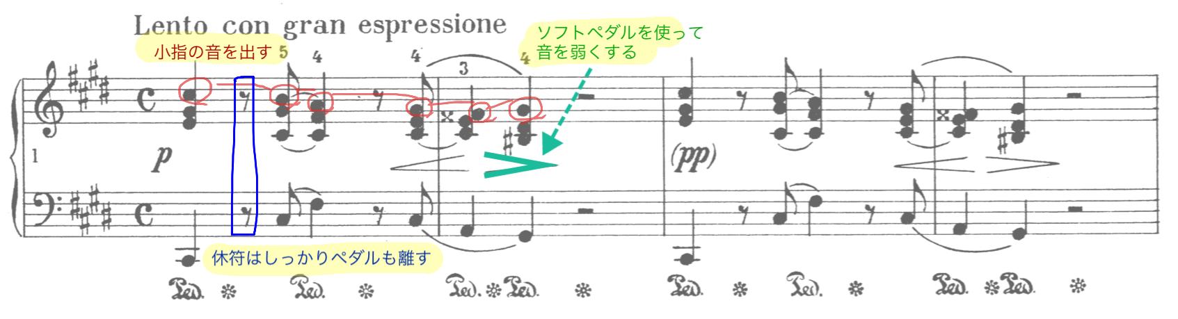 悲しげ旋律が印象的な序奏