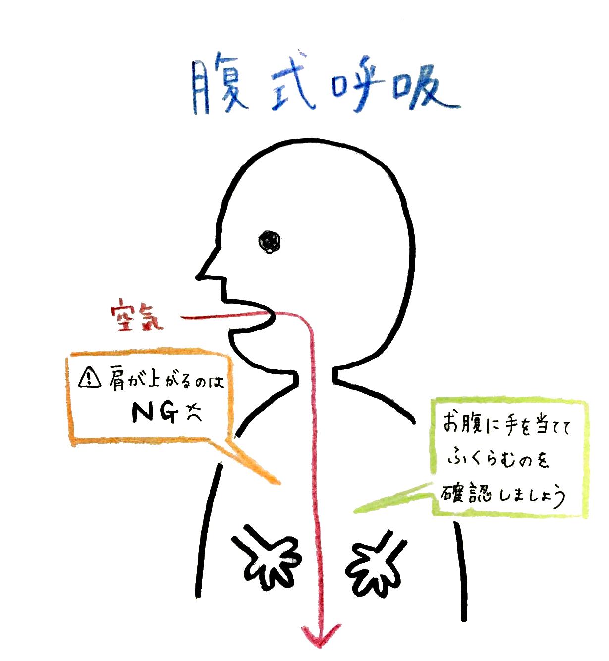 腹式呼吸(画:金子良江)